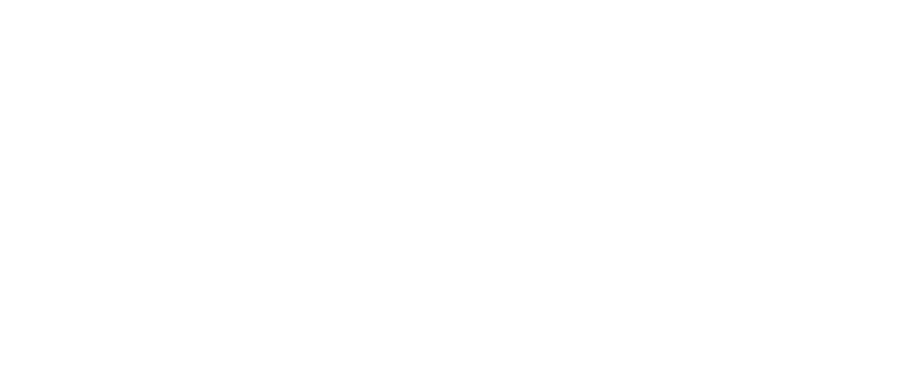 Ninebot SG Logo